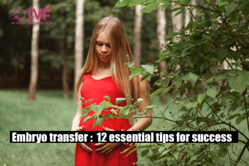 Embryo transfer: 12 essential tips for success